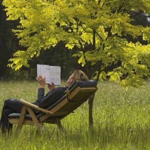 Lesen im Freien