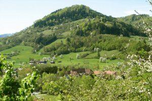 Steinschalerhof-Blick-auf-den-Fronberg
